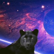 Spacepanther